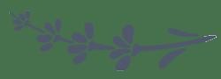 Mountain-Garden-Logo-lavender
